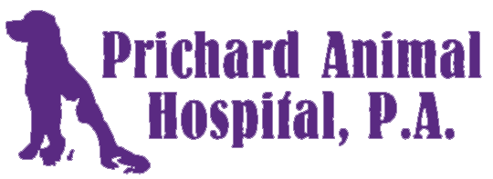 Prichard Animal Hospital